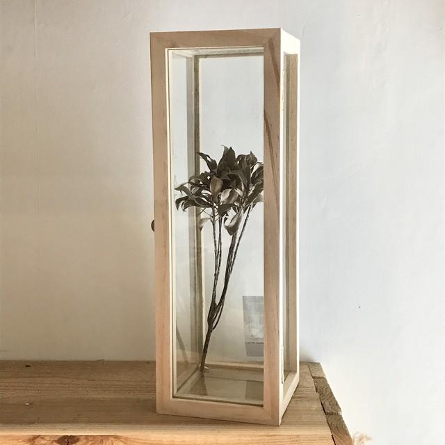 """ Glass Storage Box / グラスストレージボックス """