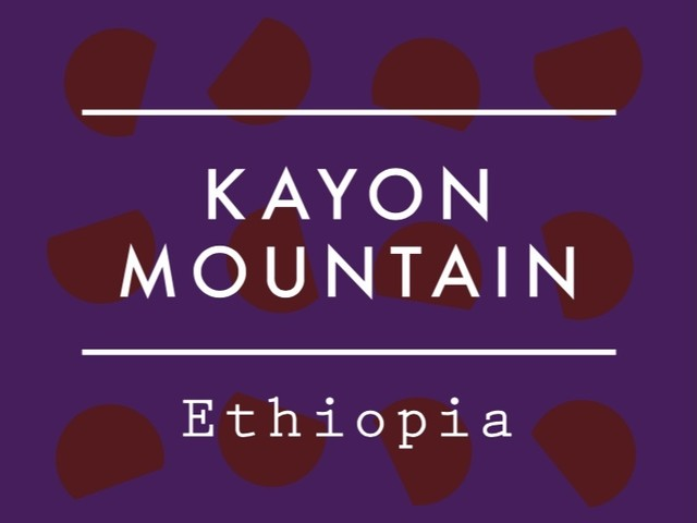 【100g】エチオピア  /  KAYON MOUNTAIN  Natural