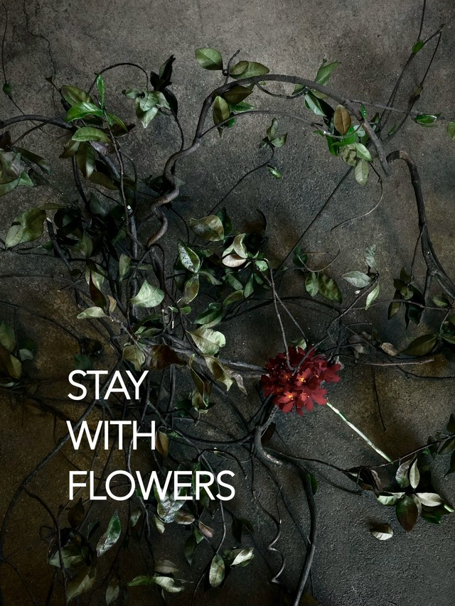 STAY WITH FLOWERS 花束/大 5/20〜31のお届け 送料無料