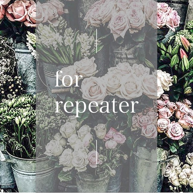 【Tさま専用】Mark for repeater