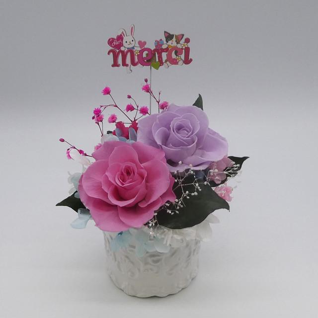 母の日ラシェーナシリーズ ピンク