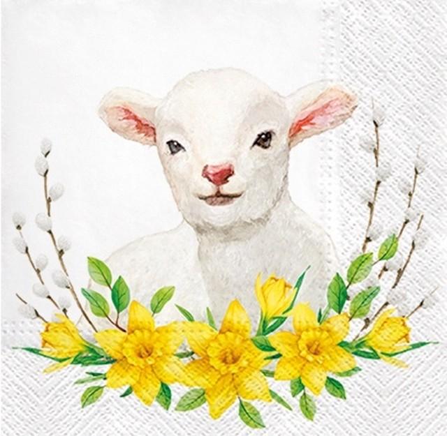 入荷しました |2020春夏【PAW】バラ売り2枚 ランチサイズ ペーパーナプキン LAMB WITH WREATH ホワイト