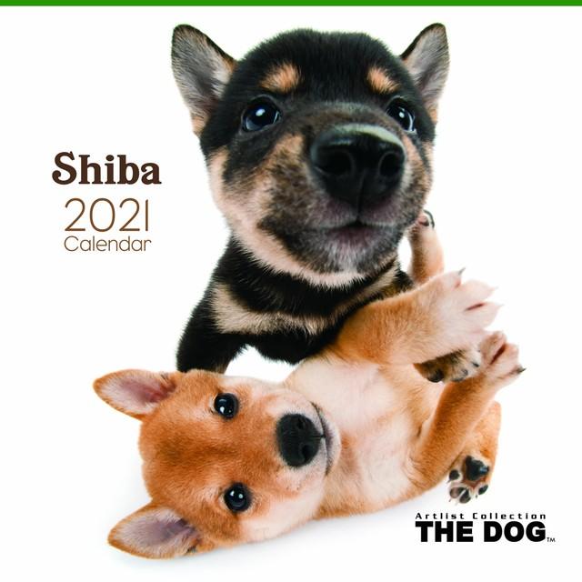 2021年 THE DOGカレンダー【大判サイズ】柴