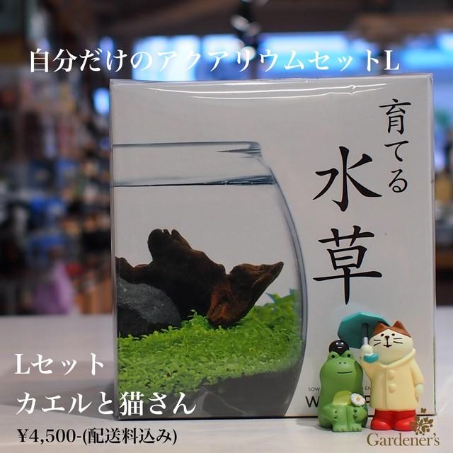 水草栽培セット 癒しのアクアリウムセットL (送料込み)