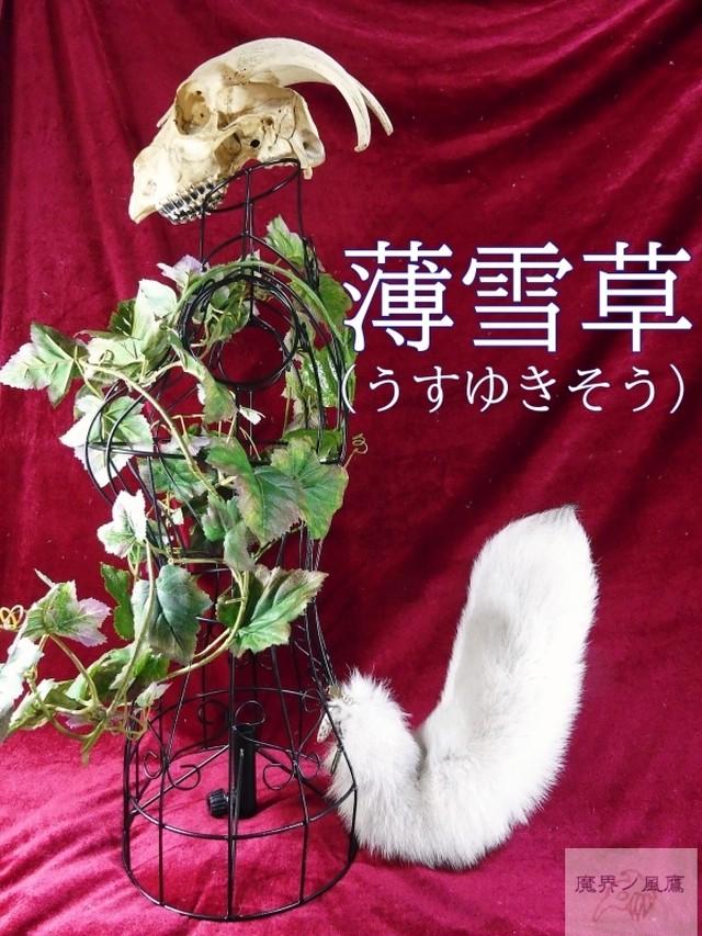 くるりん☆けもののしっぽ(薄雪草) kz-244