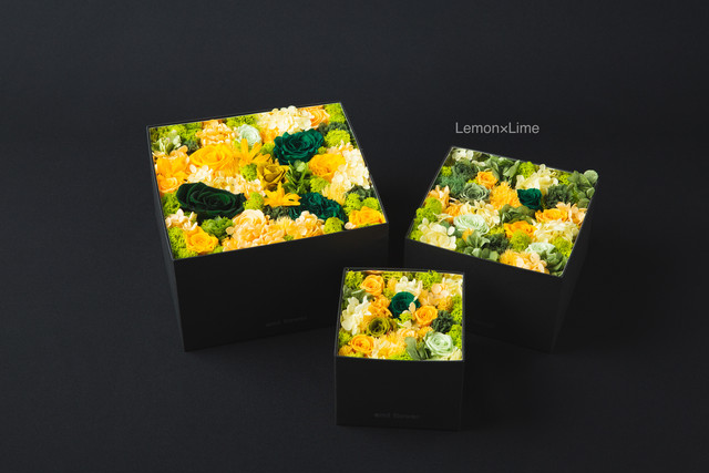 Preserved Flower Box【Size M】全14色