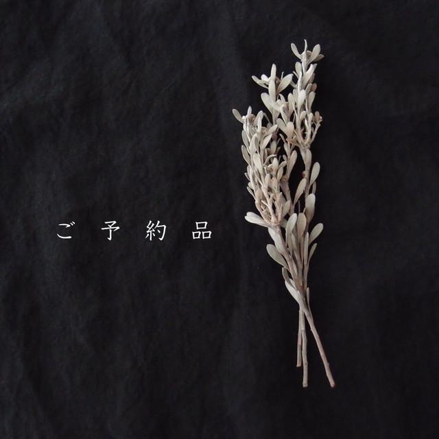 【ご予約品・F様】red choral × petit beans pearl【真珠の刺繍ピアス】