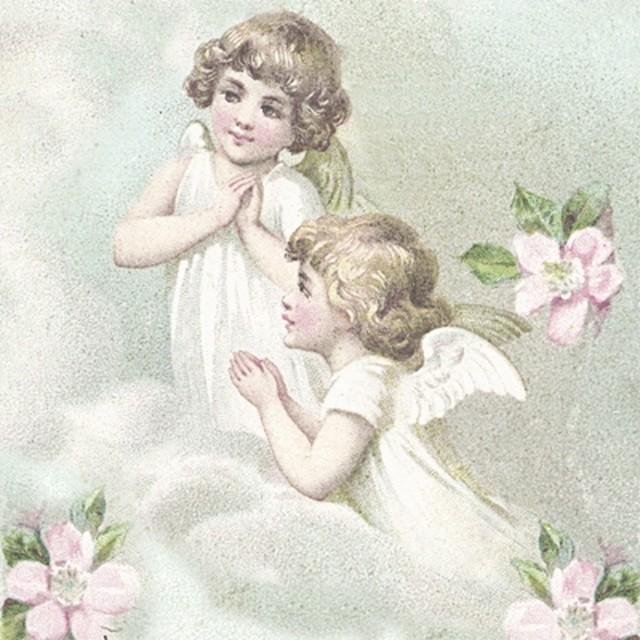 【Sagen Vintage Design】バラ売り2枚 ランチサイズ ペーパーナプキン FLOWER FAIRIES ピンク