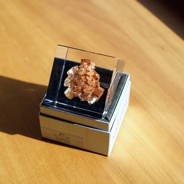 鉱物が好物/ペーパーウェイト