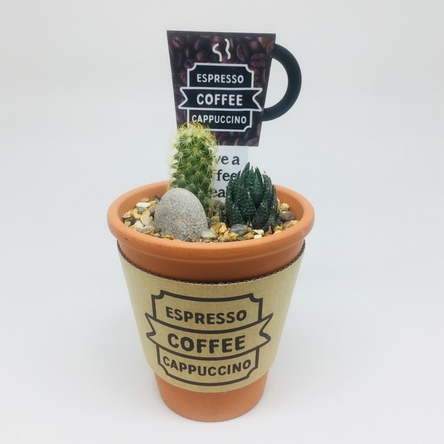 CAFE CUP サボテンアソート