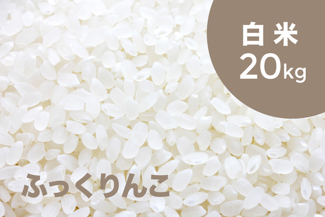 【令和元年産 新米】特別栽培米 ふっくりんこ(白米)20kg