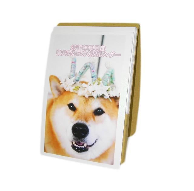 柴犬まる 日めくりカレンダー 【2017年10月】
