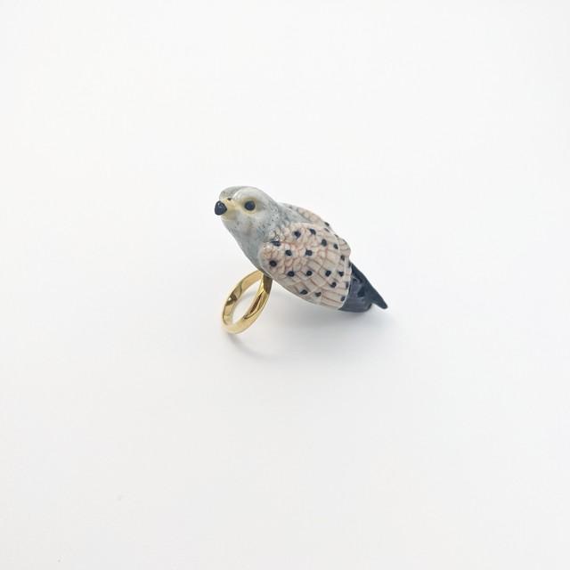 【Nach】 Eagle ring