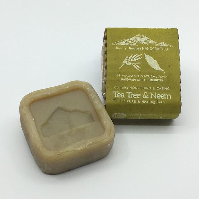 アーユルヴェーダティーツリー&ニームソープ〈浄化〉Bounty Himalaya Tea Tree & Neem Soap