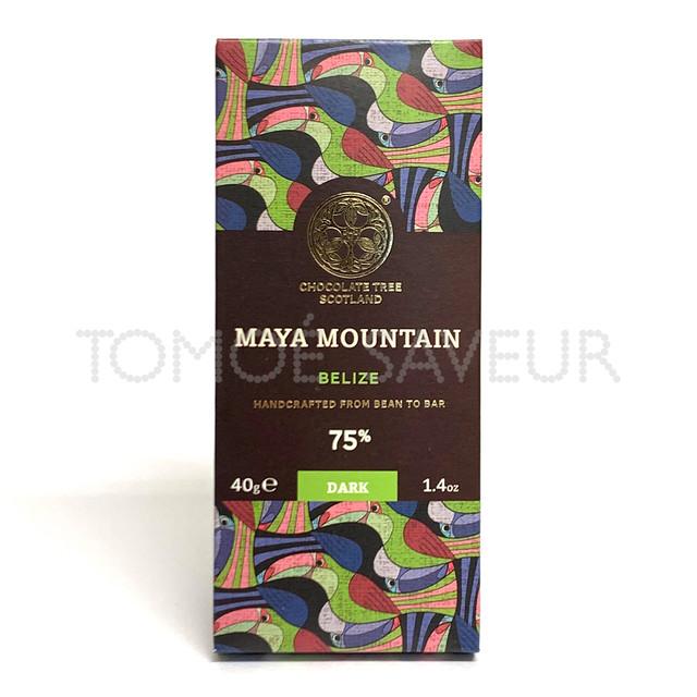 チョコレートツリー マヤマウンテンベリーズ75%