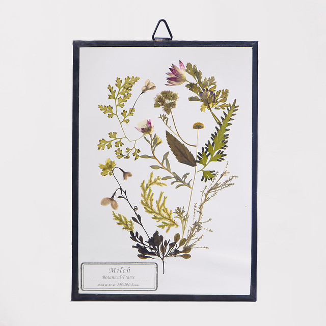 Botanical Frame S033 - Black