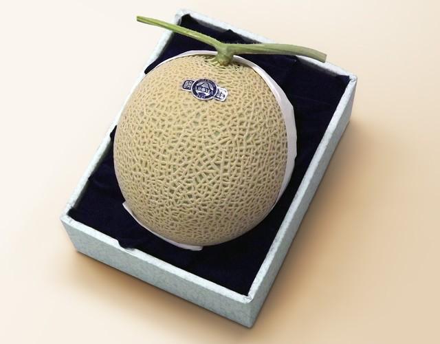 【通年ギフト( メロン)】静岡産 アローママスクメロン【1玉約1.4kg】