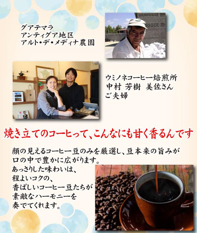 顔の見えるスペシャルティ―コーヒー200g グアテマラ アンティグア ウォッシュド