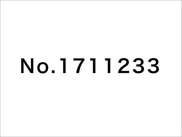 No.1711233 / 片岡メリヤス