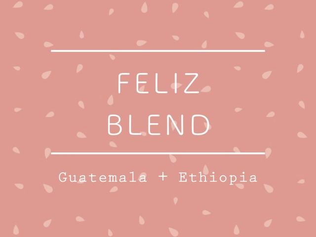 【100g】フェリスブレンド / Ethiopia + Guatemala <季節限定>