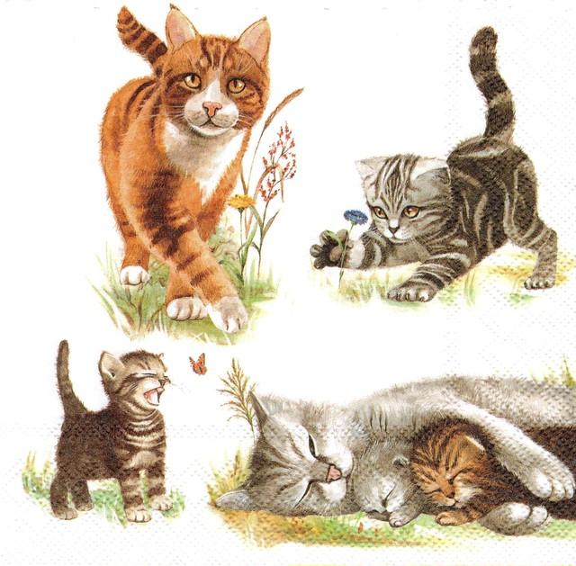 【Ambiente】バラ売り2枚 ランチサイズ ペーパーナプキン Cats Family ホワイト