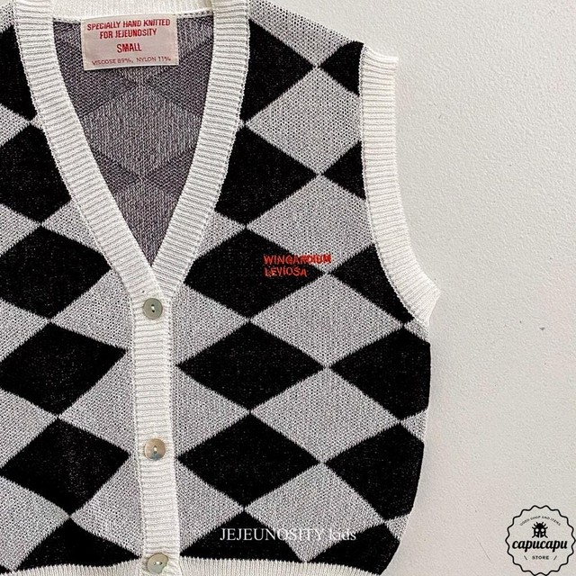 «sold out» jejeunosity Viscose vest 2colors ビスコースベスト
