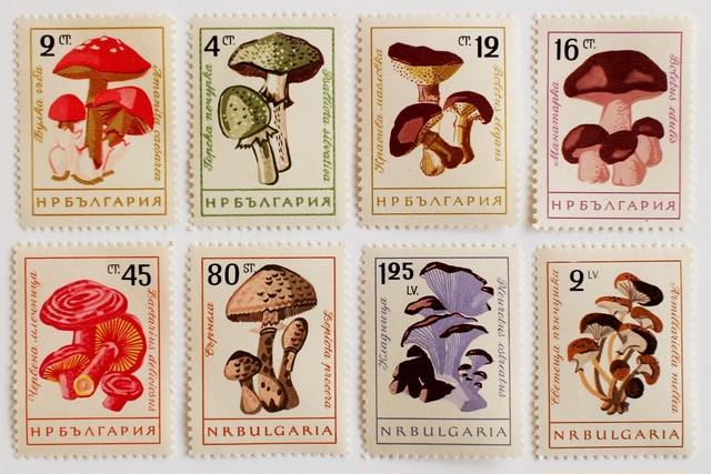 リリー / ブルガリア 1978