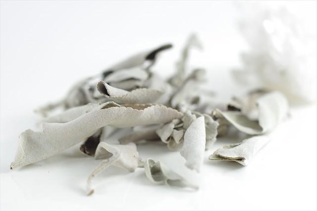 浄化用ホワイトセージ5g - メイン画像