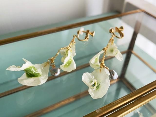 【6月の誕生石】淡水パール&「晴れやかな魅力」花言葉を持つラナンキュラスのイヤリング/ピアス