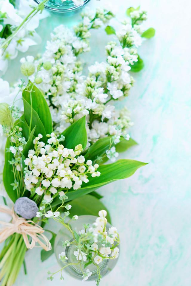 60サイズ:すずらんグリーン「花香」を感じる5種の淡い色のスタイリングボード