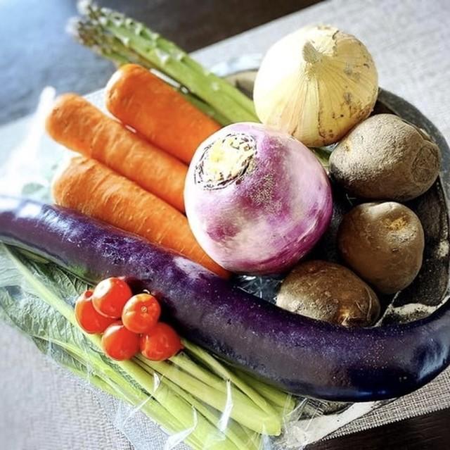 【定期購入・1か月1回】のら野菜お任せセット