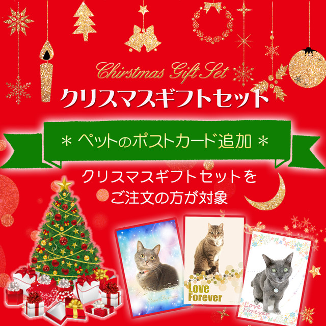 【X'masギフトセット】遠隔ヒーリング・追加