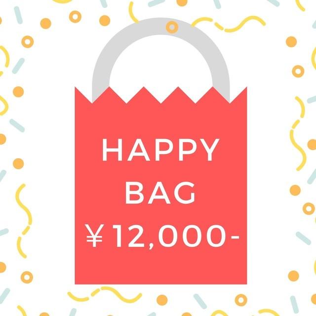 【数量限定】¥12000-HAPPY BAG