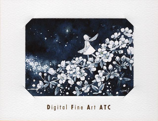 DFA ATC | トヨダイズミ ① 『さかさまの夜空』