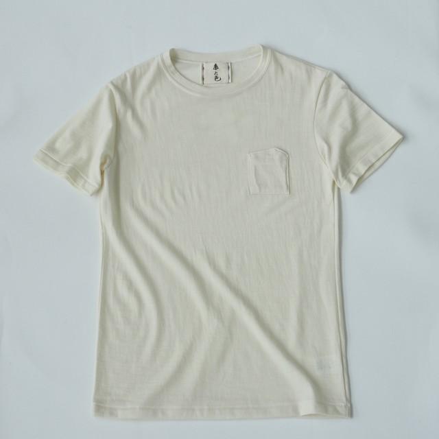 登山スペシャル ひつじ 尾州 ウール Tシャツ