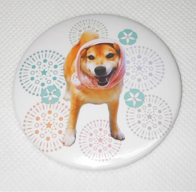 柴犬まる -夏のかっぱまる花火 マグネット(大)-