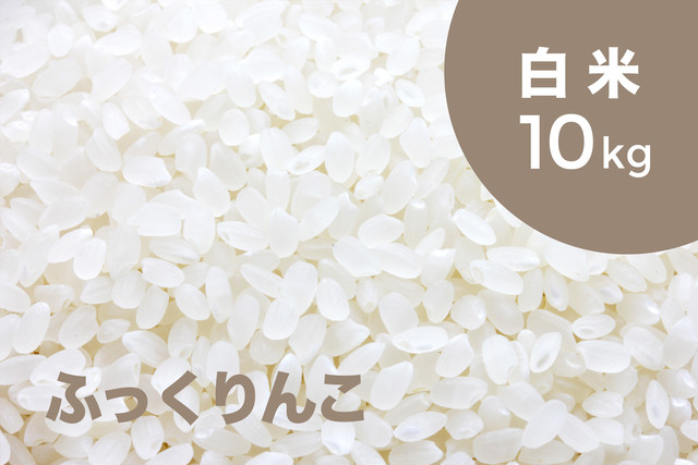 【令和元年産 新米】特別栽培米 ふっくりんこ(白米)10kg