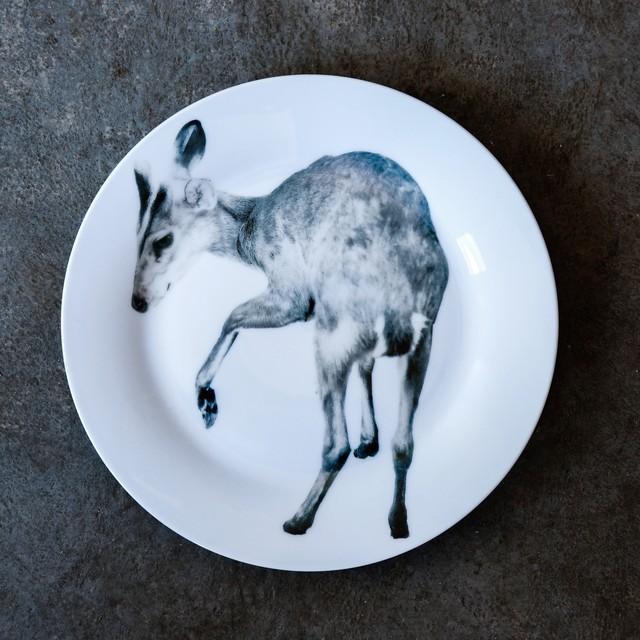 《michirico》動物たちの飾るお皿「小鹿」