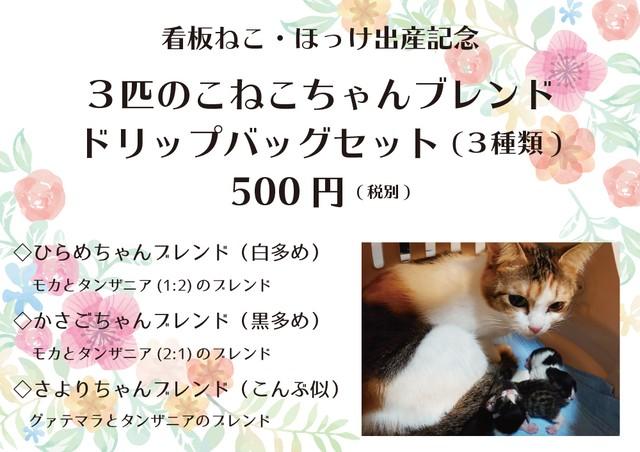 【祝・看板ねこほっけの出産】3匹のこねこちゃんブレンド・ドリップバッグセット(3袋×3種類)