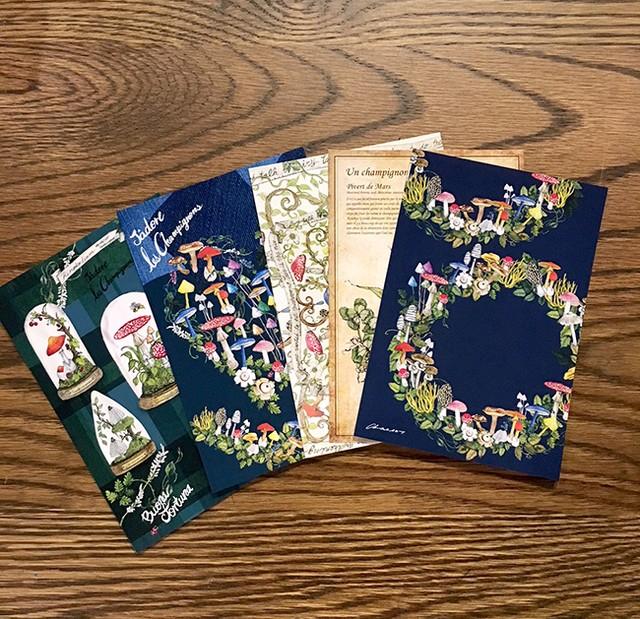 キノコのポストカード  5枚セット(送料込み価格)