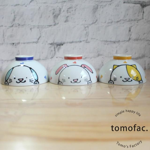 波佐見焼 こども茶碗 リトルキッズ 【tomofac】