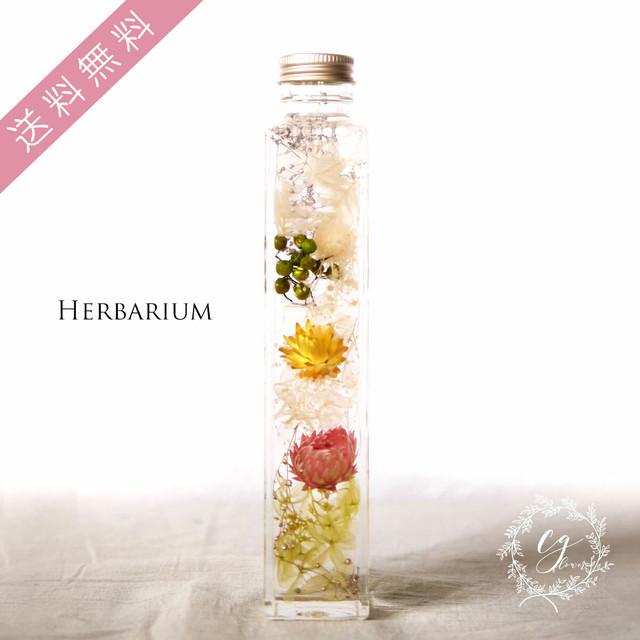 ハーバリウム hh-1904