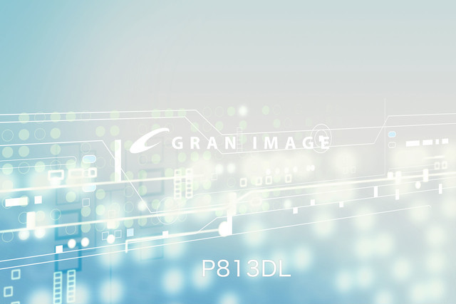 グランイメージCG素材集 P813DL NEXT ネクスト ソフトデジタルシーン100(ダウンロード製品 230MB)