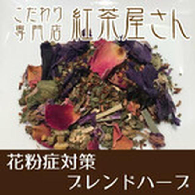 【¥2160以上でメール便送料無料】花粉症対策ブレンドハーブ ティバッグ1.2g×5個