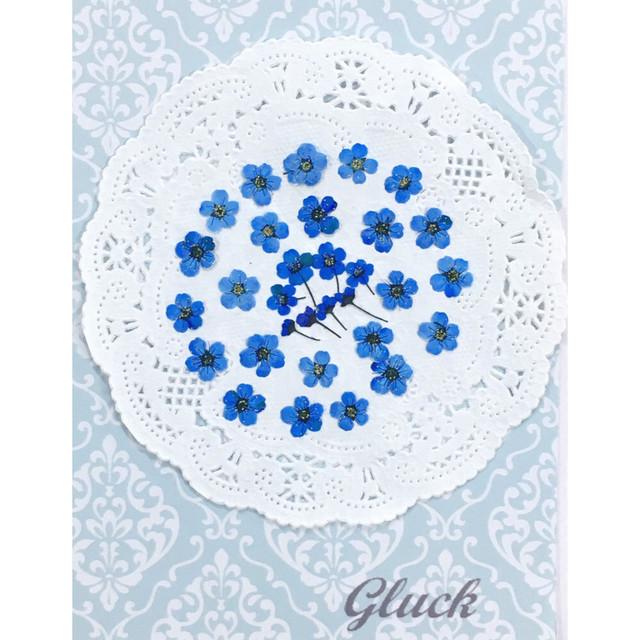 コンパクト押し花 こでまり(グランブルー) 少量をパックにしてお届け! 押し花素材