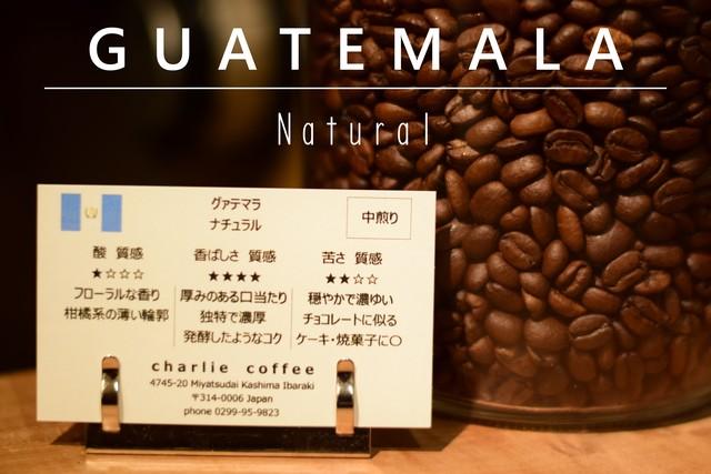 【3か月定期便】風味豊かなスイスウォーター式デカフェ(カフェインレス)豆100g×4袋セット
