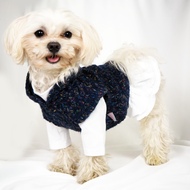 【犬服・ドッグウェア】Fancy House オーガニックコットンのインナー付きフーディーニットベスト