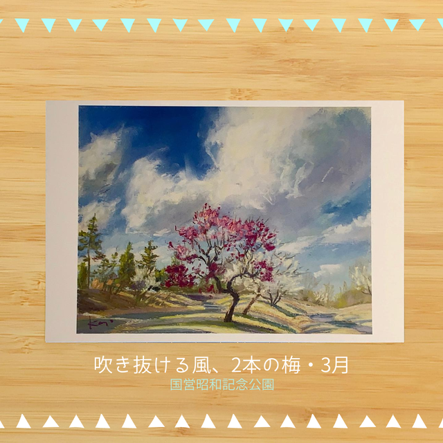 国営昭和記念公園の風景 ポストカードセットD