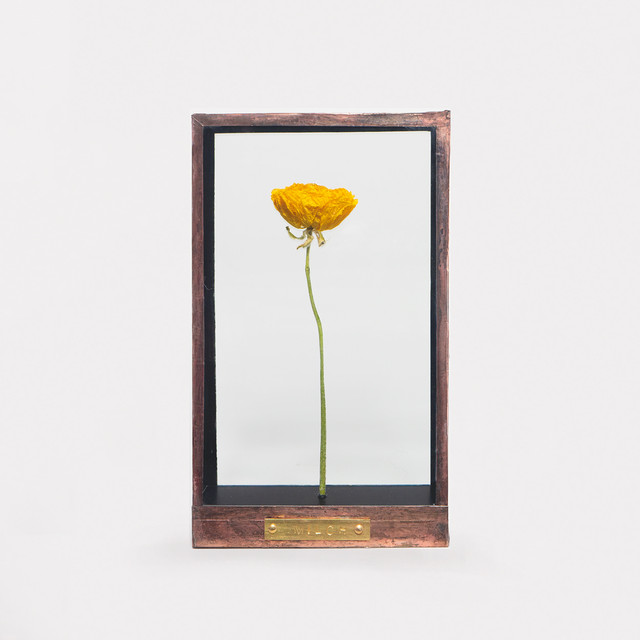 Botanical Frame D01 - Copper