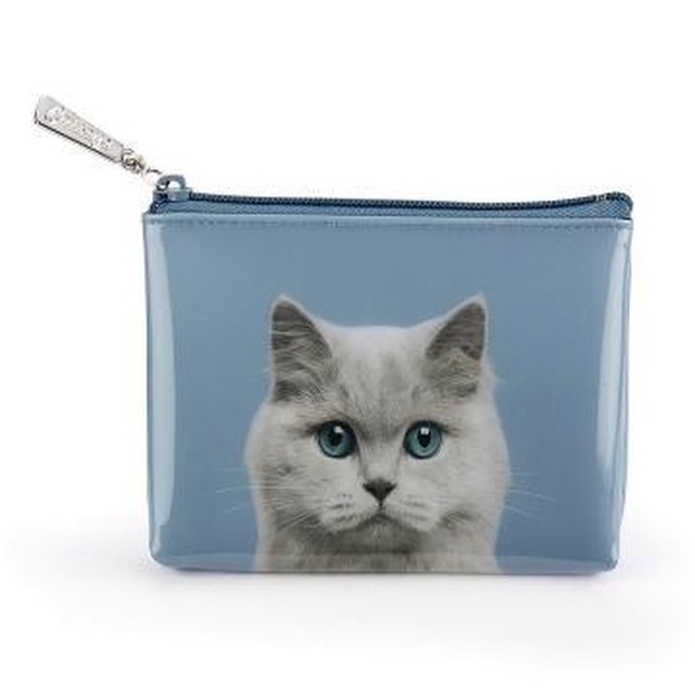 Cat on Blue Pouch_CAB4P